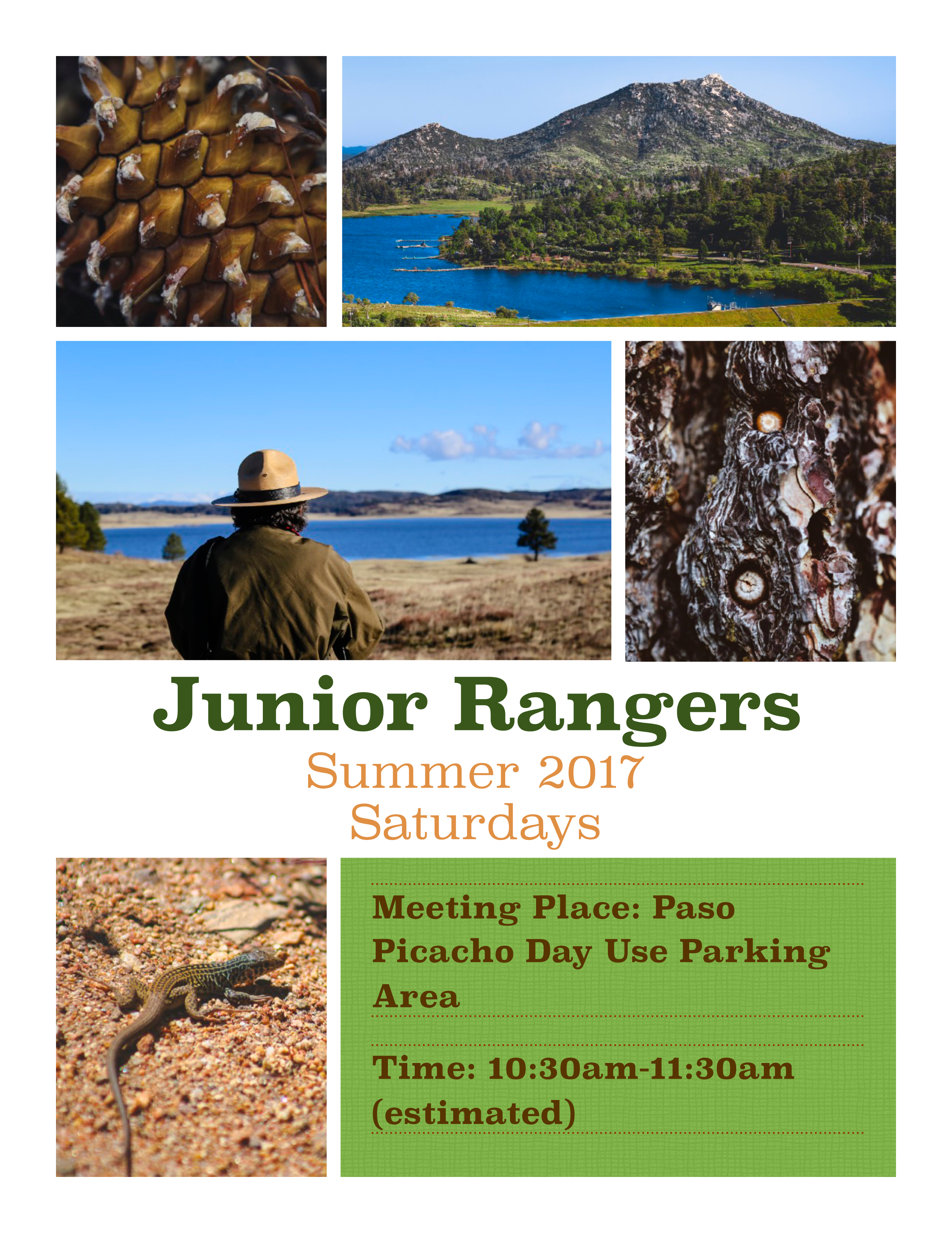 Jr Ranger Program